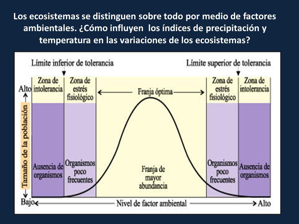 Los ecosistemas se distinguen sobre todo por medio de factores ambientales.