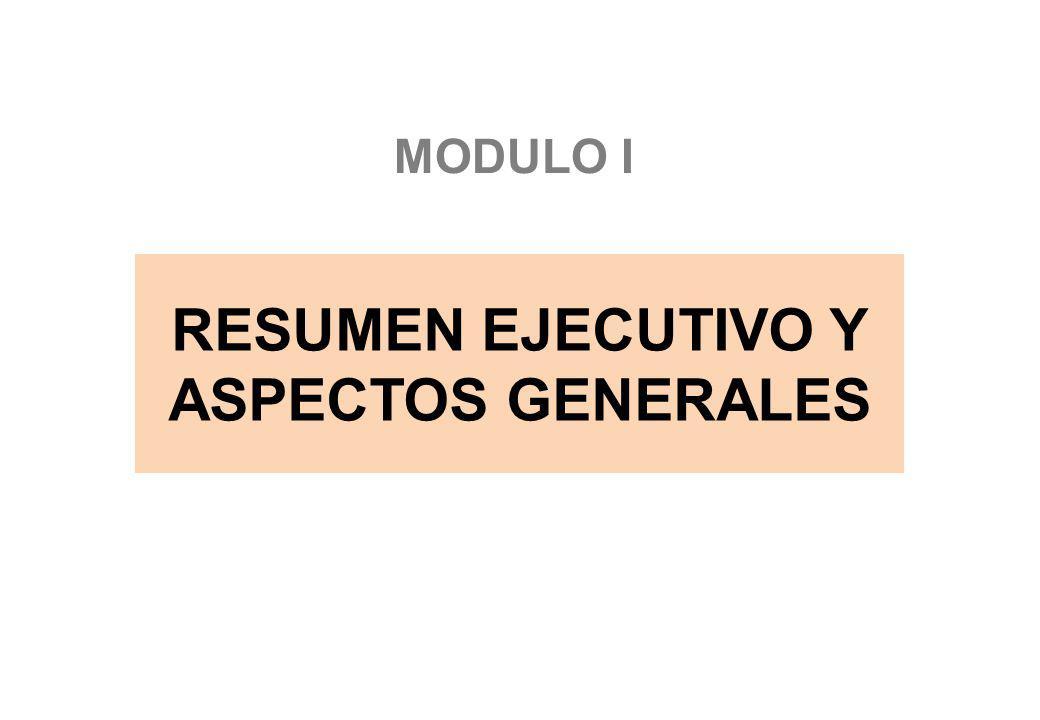 RESUMEN EJECUTIVO Y ASPECTOS GENERALES MODULO I