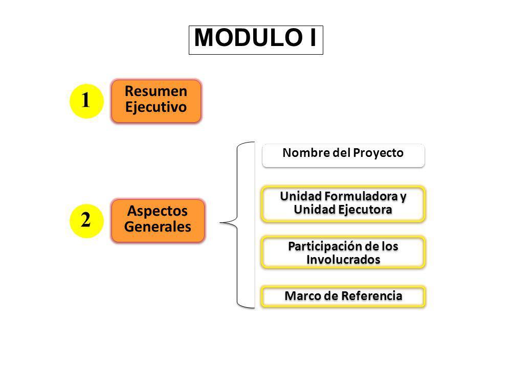 Unidad Formuladora y Unidad Ejecutora Participación de los Involucrados Marco de Referencia Nombre del Proyecto Resumen Ejecutivo 1 Aspectos Generales 2
