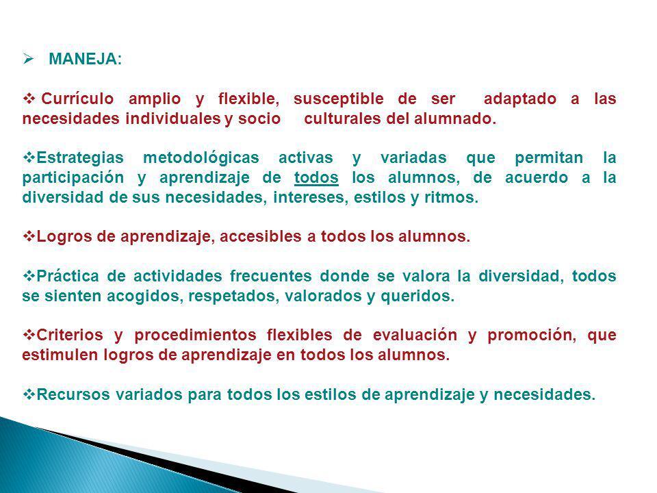 MANEJA: Currículo amplio y flexible, susceptible de ser adaptado a las necesidades individuales y socio culturales del alumnado. Estrategias metodológ