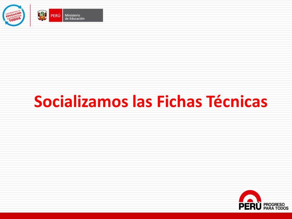 Socializamos las Fichas Técnicas