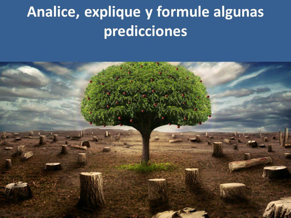 Analice, explique y formule algunas predicciones