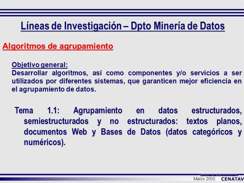 Líneas de Investigación – Dpto Minería de Datos Marzo 2005 Algoritmos de agrupamiento Objetivo general: Desarrollar algoritmos, así como componentes y