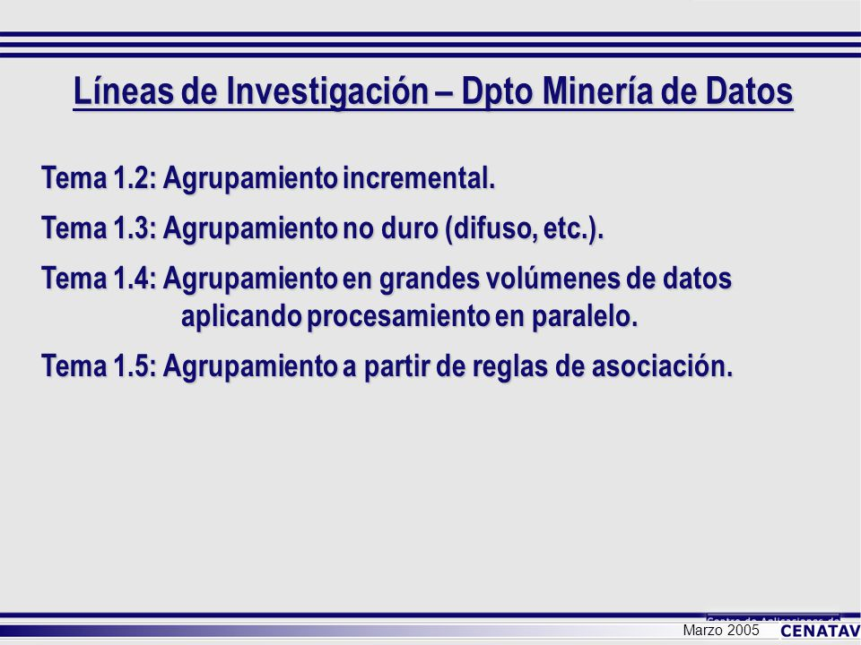 Líneas de Investigación – Dpto Minería de Datos Marzo 2005 Tema 1.2: Agrupamiento incremental. Tema 1.3: Agrupamiento no duro (difuso, etc.). Tema 1.4