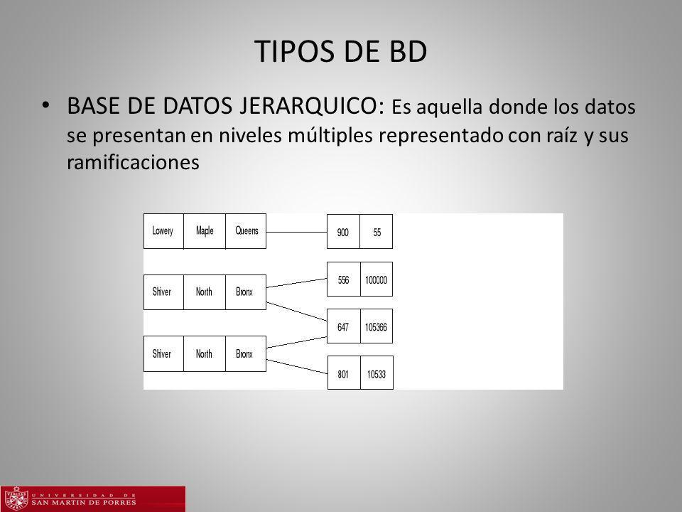 TIPOS DE BD BASE DE DATOS JERARQUICO: Es aquella donde los datos se presentan en niveles múltiples representado con raíz y sus ramificaciones