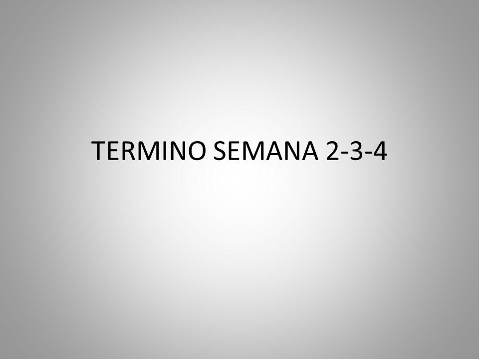 TERMINO SEMANA 2-3-4
