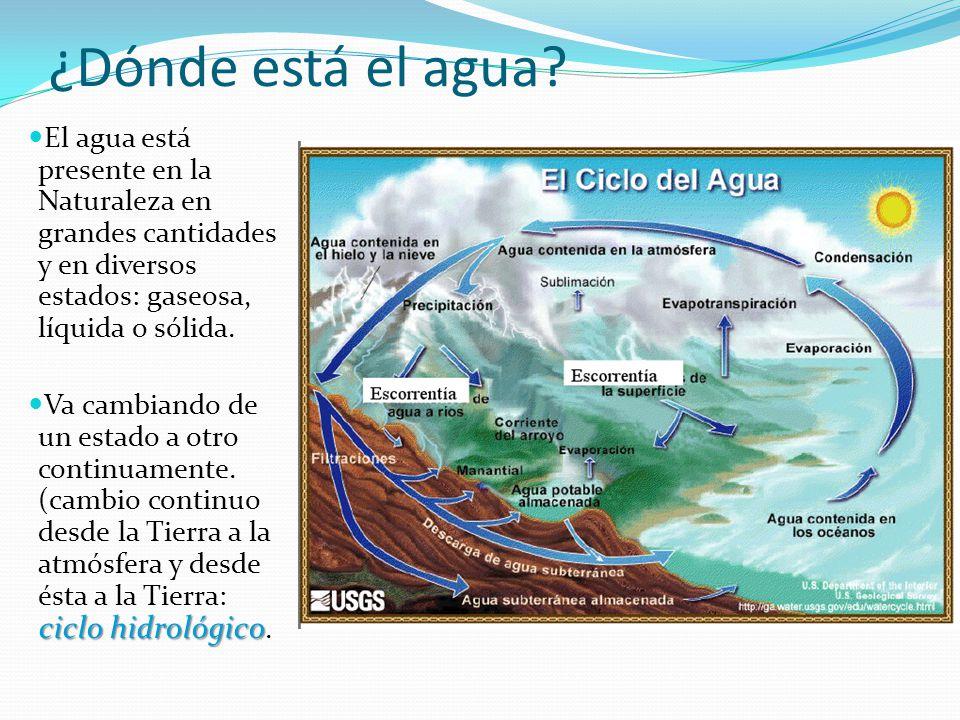 El agua está presente en la Naturaleza en grandes cantidades y en diversos estados: gaseosa, líquida o sólida. ciclo hidrológico Va cambiando de un es