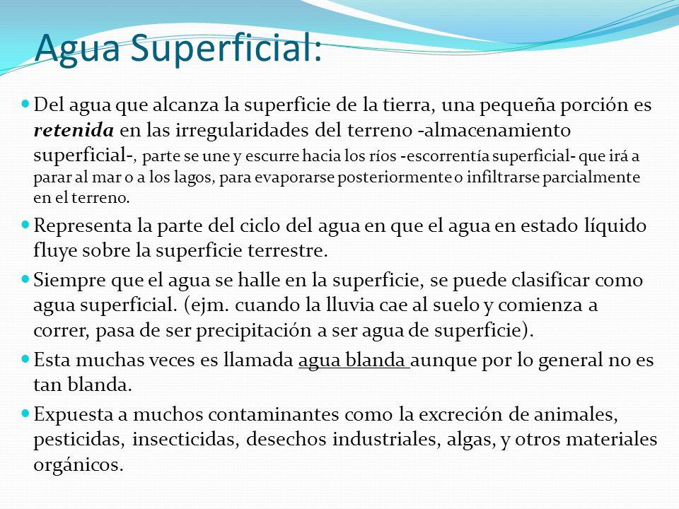 Agua Superficial: Del agua que alcanza la superficie de la tierra, una pequeña porción es retenida en las irregularidades del terreno -almacenamiento