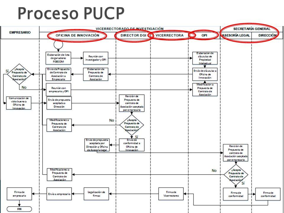 Proceso PUCP