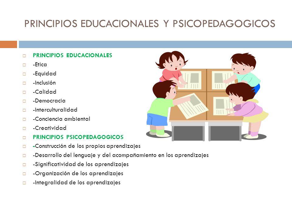 PRINCIPIOS EDUCACIONALES Y PSICOPEDAGOGICOS PRINCIPIOS EDUCACIONALES -Etica -Equidad -Inclusión -Calidad -Democracia -Interculturalidad -Conciencia am