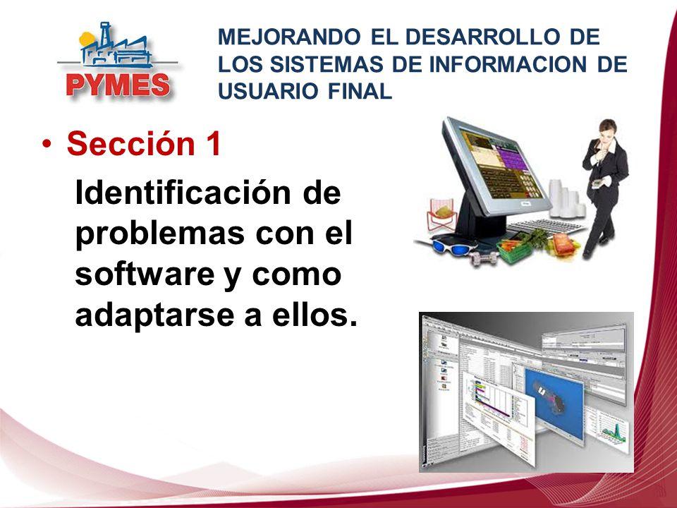 Sección 1 Identificación de problemas con el software y como adaptarse a ellos. MEJORANDO EL DESARROLLO DE LOS SISTEMAS DE INFORMACION DE USUARIO FINA