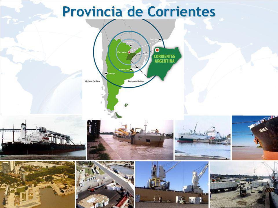 Corrientes es la Provincia con mayor superficie forestada del País 450.000 Has.