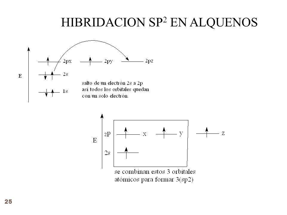 HIBRIDACION SP 2 EN ALQUENOS 25