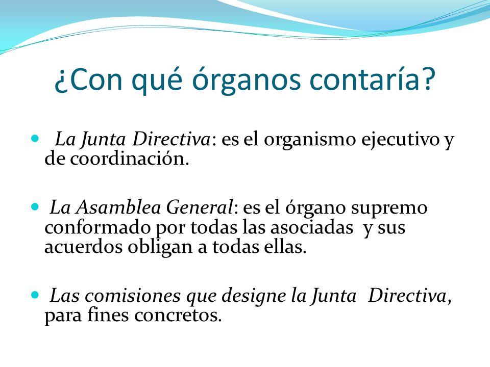 ¿Con qué órganos contaría. La Junta Directiva: es el organismo ejecutivo y de coordinación.