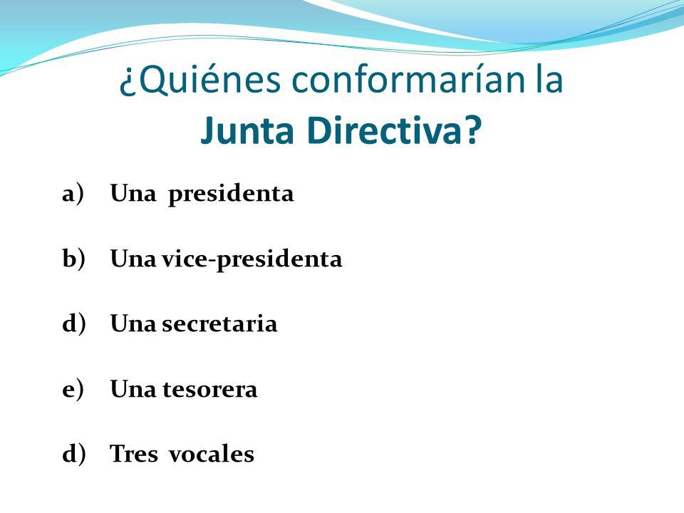 ¿Cómo se elegiría a la Junta Directiva.