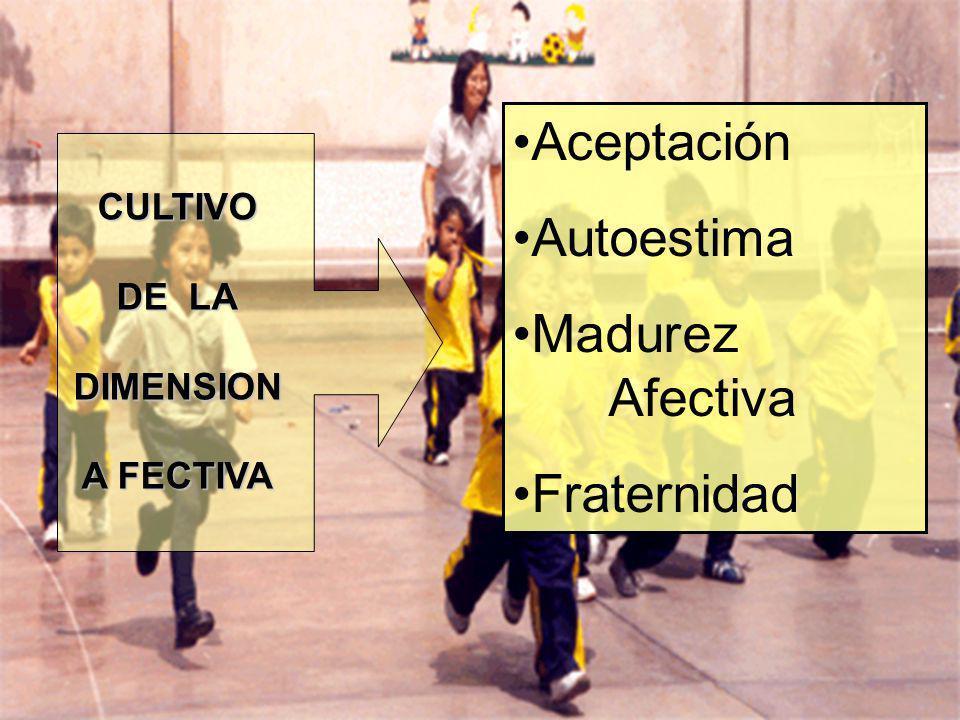 CULTIVO DE LA DIMENSION A FECTIVA Aceptación Autoestima Madurez Afectiva Fraternidad