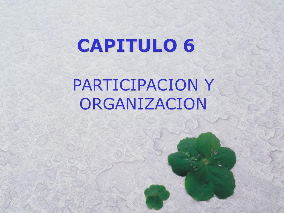 CAPITULO 6 PARTICIPACION Y ORGANIZACION