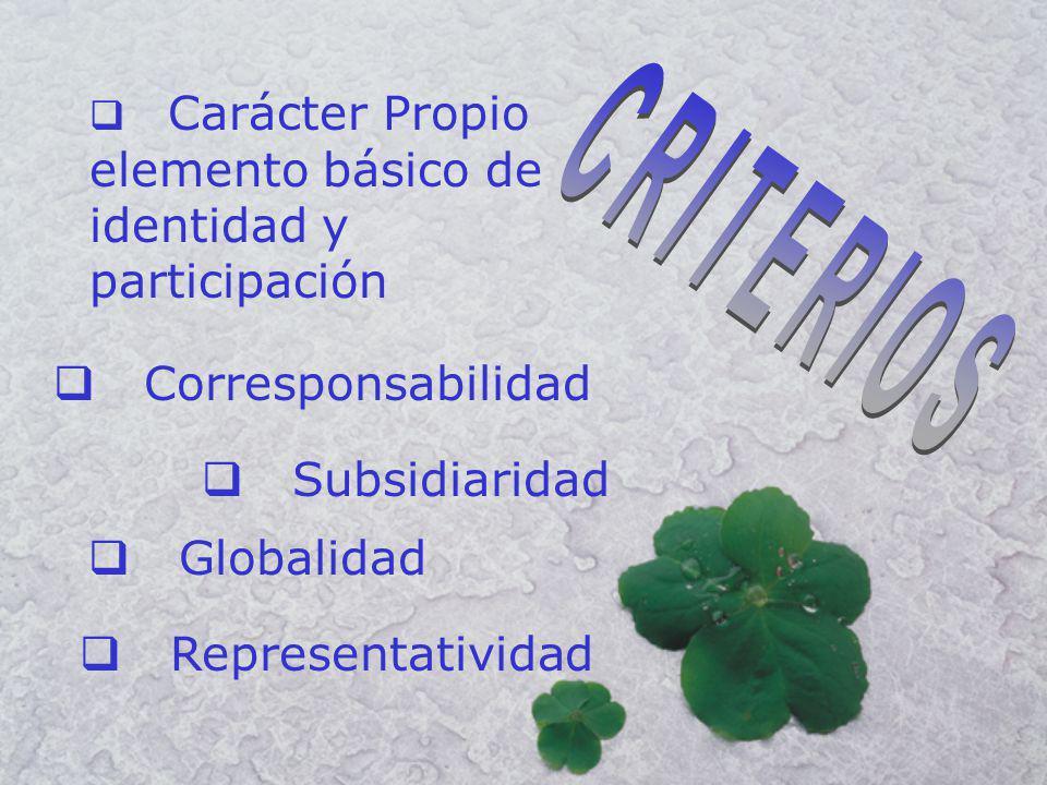 Corresponsabilidad Subsidiaridad Globalidad Representatividad Carácter Propio elemento básico de identidad y participación