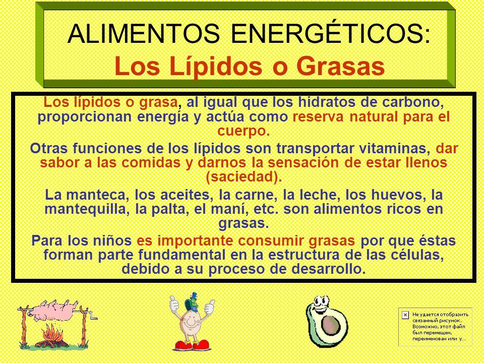 ALIMENTOS ENERGÉTICOS: Los Carbohidratos Los carbohidratos, se les llama también azúcares o glúcidos. En nuestra dieta diaria los carbohidratos son lo