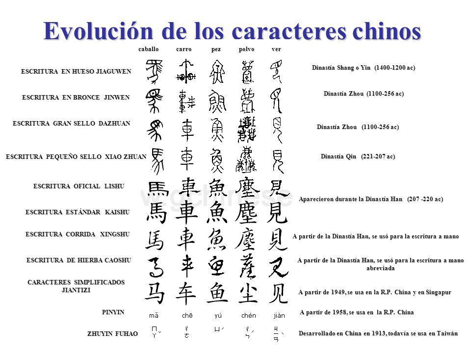 Evolución de los caracteres chinos Dinastía Shang o Yin (1400-1200 ac) Dinastía Zhou (1100-256 ac) ESCRITURA EN HUESO JIAGUWEN ESCRITURA EN BRONCE JIN