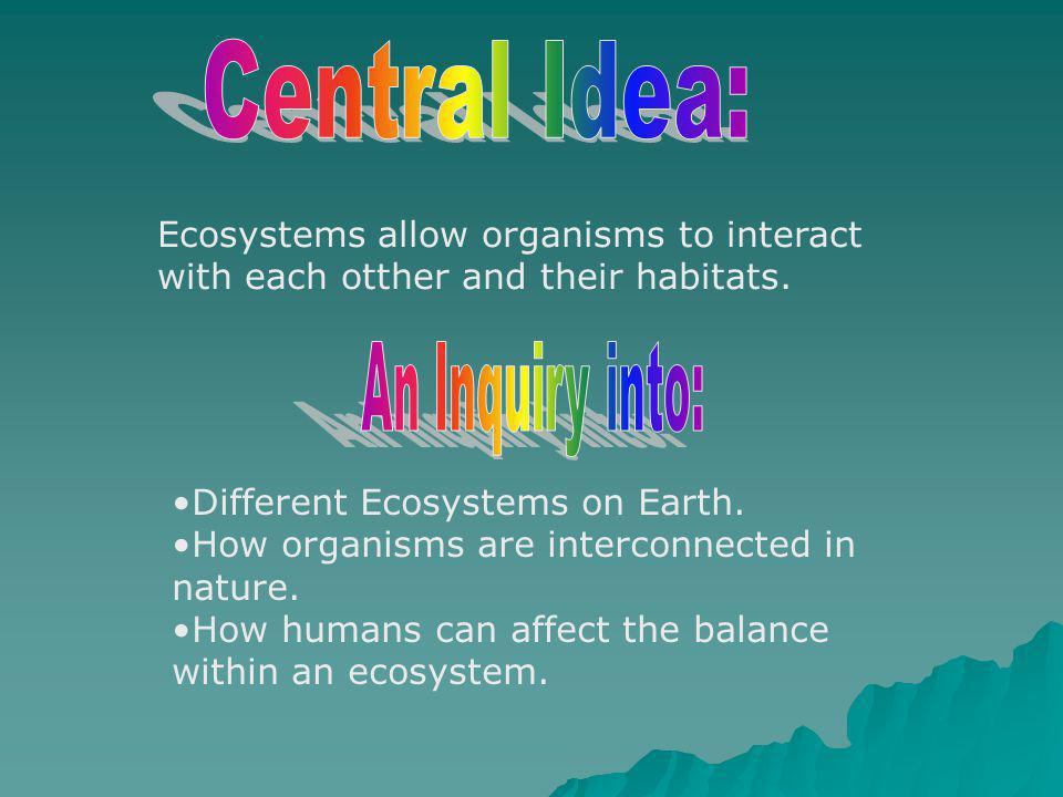 Ecosystems allow organisms to interact with each otther and their habitats. Different Ecosystems on Earth. How organisms are interconnected in nature.