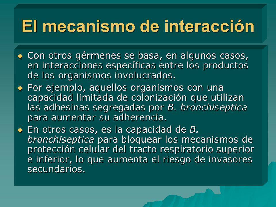 El mecanismo de interacción Con otros gérmenes se basa, en algunos casos, en interacciones específicas entre los productos de los organismos involucra