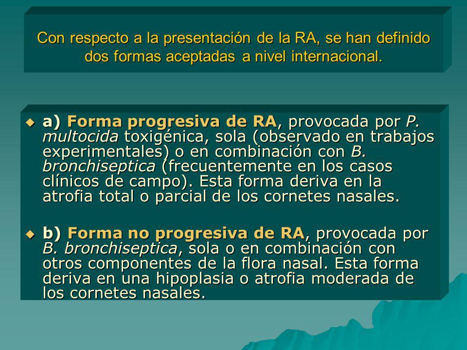 Con respecto a la presentación de la RA, se han definido dos formas aceptadas a nivel internacional. a) Forma progresiva de RA, provocada por P. multo