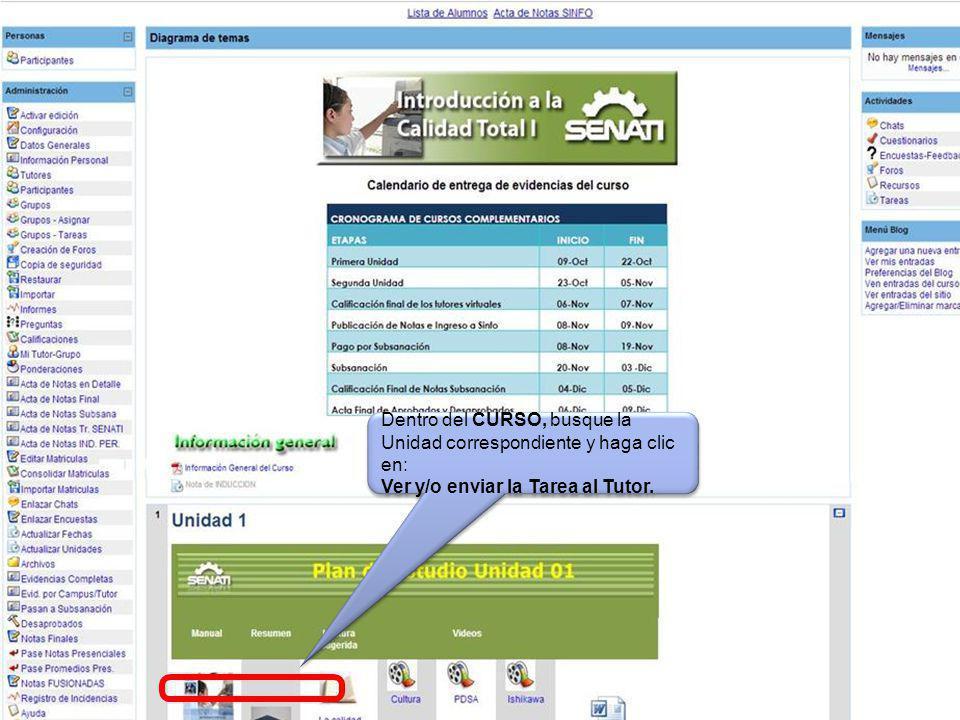 Dentro del CURSO, busque la Unidad correspondiente y haga clic en: Ver y/o enviar la Tarea al Tutor.