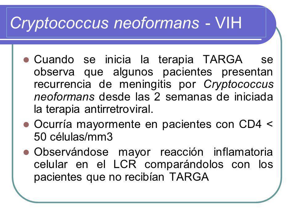 Cryptococcus neoformans - VIH Cuando se inicia la terapia TARGA se observa que algunos pacientes presentan recurrencia de meningitis por Cryptococcus neoformans desde las 2 semanas de iniciada la terapia antirretroviral.