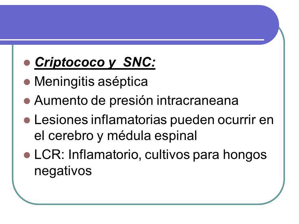 Criptococo y SNC: Meningitis aséptica Aumento de presión intracraneana Lesiones inflamatorias pueden ocurrir en el cerebro y médula espinal LCR: Inflamatorio, cultivos para hongos negativos