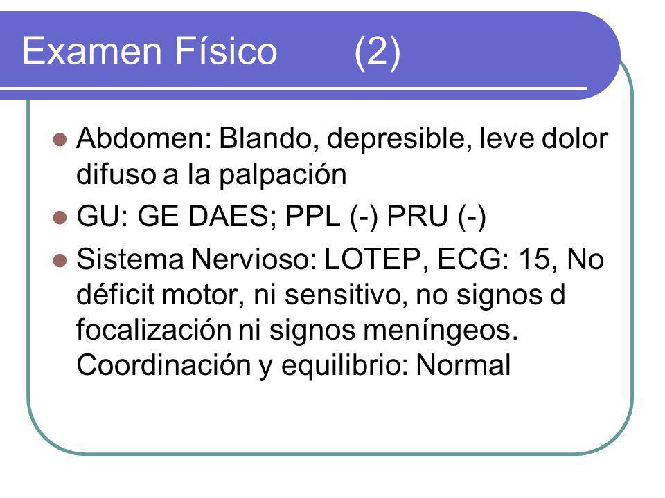 Abdomen: Blando, depresible, leve dolor difuso a la palpación GU: GE DAES; PPL (-) PRU (-) Sistema Nervioso: LOTEP, ECG: 15, No déficit motor, ni sensitivo, no signos d focalización ni signos meníngeos.