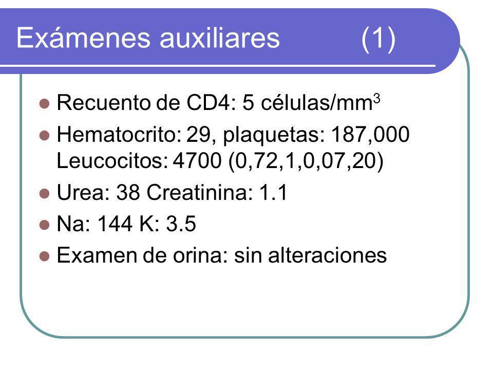 Exámenes auxiliares(1) Recuento de CD4: 5 células/mm 3 Hematocrito: 29, plaquetas: 187,000 Leucocitos: 4700 (0,72,1,0,07,20) Urea: 38 Creatinina: 1.1 Na: 144 K: 3.5 Examen de orina: sin alteraciones