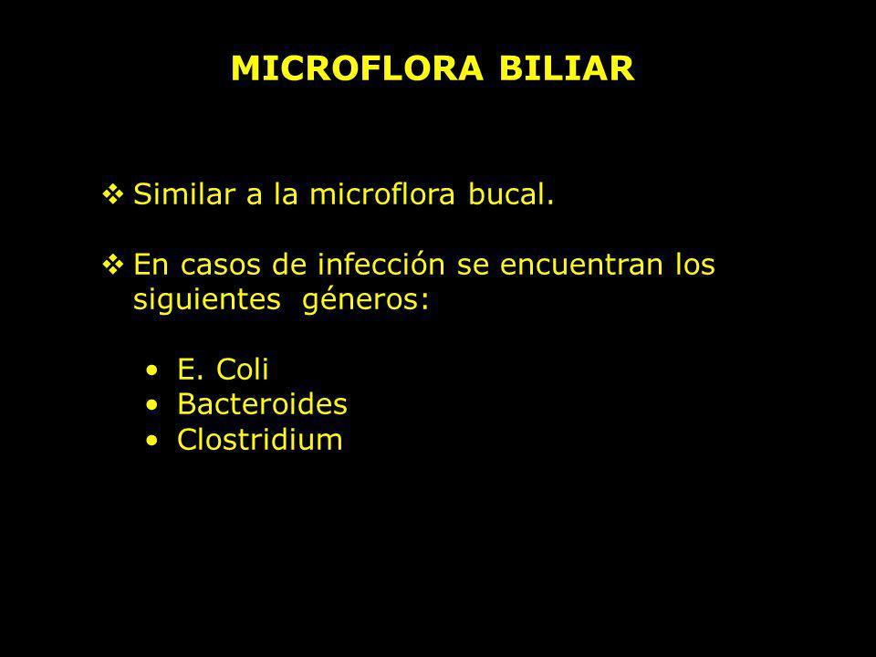 MICROFLORA BILIAR Similar a la microflora bucal. En casos de infección se encuentran los siguientes géneros: E. Coli Bacteroides Clostridium