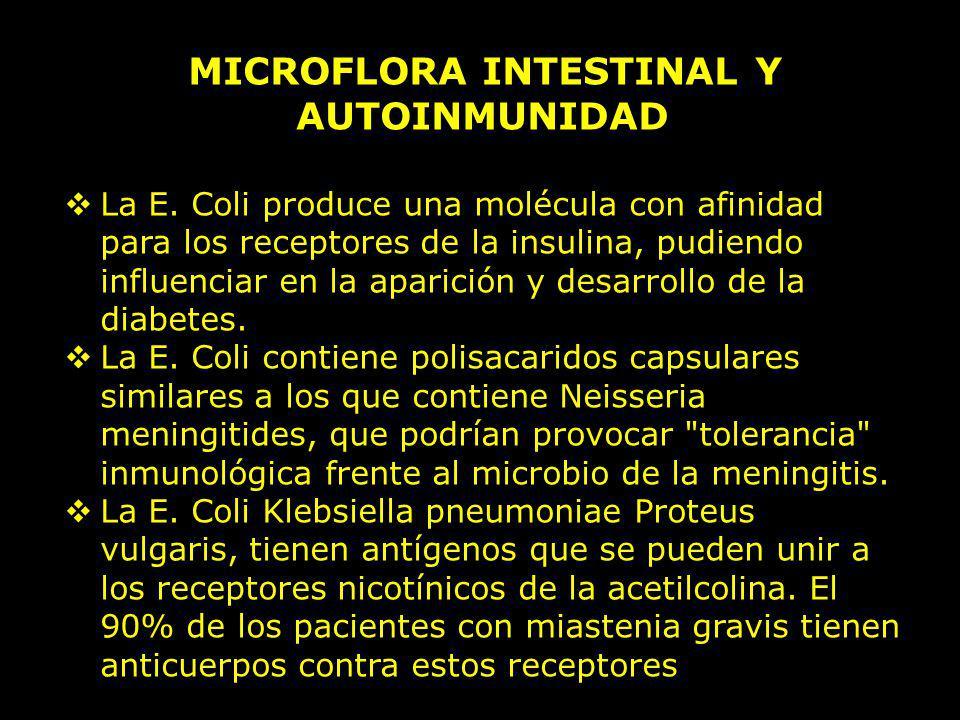 MICROFLORA INTESTINAL Y AUTOINMUNIDAD La E. Coli produce una molécula con afinidad para los receptores de la insulina, pudiendo influenciar en la apar