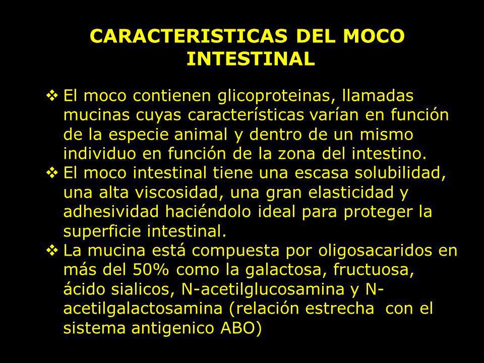 CARACTERISTICAS DEL MOCO INTESTINAL El moco contienen glicoproteinas, llamadas mucinas cuyas características varían en función de la especie animal y