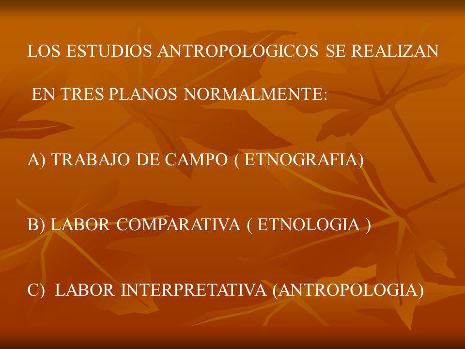 LOS ESTUDIOS ANTROPOLOGICOS SE REALIZAN EN TRES PLANOS NORMALMENTE: A)TRABAJO DE CAMPO ( ETNOGRAFIA) B)LABOR COMPARATIVA ( ETNOLOGIA ) C) LABOR INTERPRETATIVA (ANTROPOLOGIA)