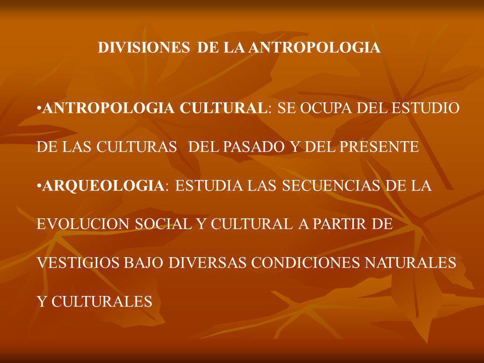 DIVISIONES DE LA ANTROPOLOGIA ANTROPOLOGIA CULTURAL: SE OCUPA DEL ESTUDIO DE LAS CULTURAS DEL PASADO Y DEL PRESENTE ARQUEOLOGIA: ESTUDIA LAS SECUENCIAS DE LA EVOLUCION SOCIAL Y CULTURAL A PARTIR DE VESTIGIOS BAJO DIVERSAS CONDICIONES NATURALES Y CULTURALES