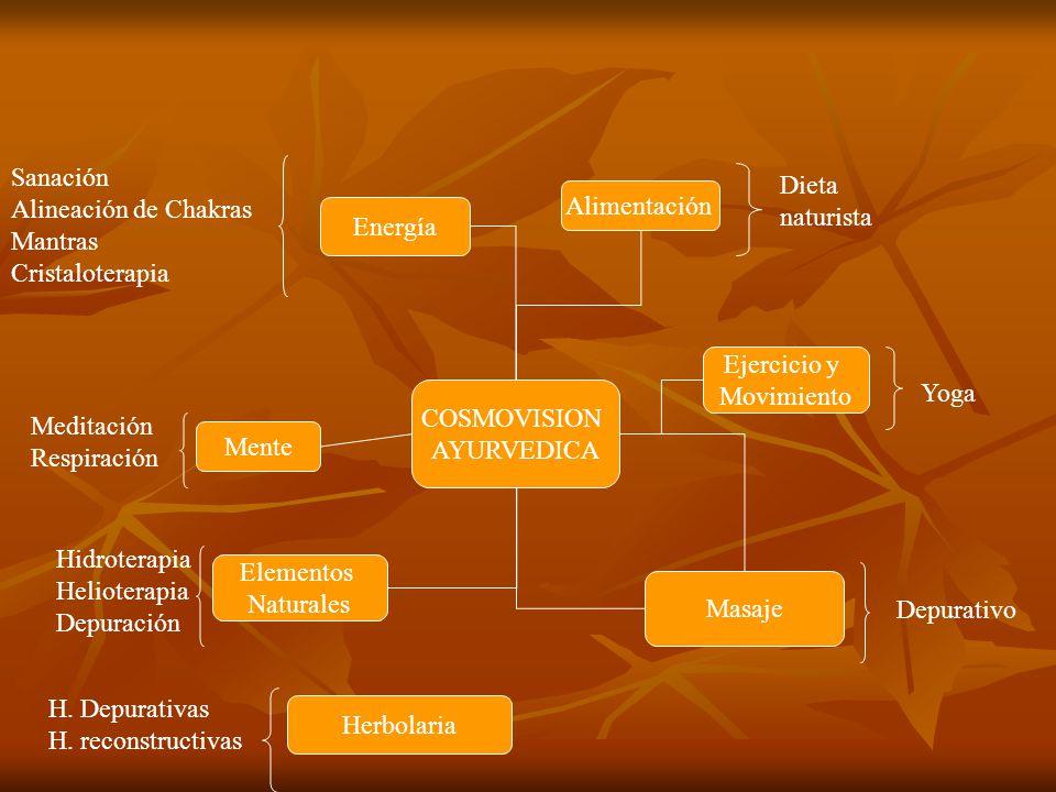 COSMOVISION AYURVEDICA Alimentación Ejercicio y Movimiento Masaje Herbolaria Elementos Naturales Mente Energía Dieta naturista Yoga Depurativo H. Depu