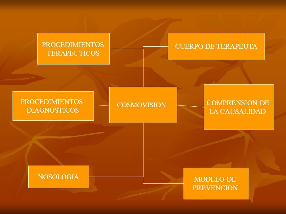 COSMOVISION CUERPO DE TERAPEUTA COMPRENSION DE LA CAUSALIDAD MODELO DE PREVENCION NOSOLOGIA PROCEDIMIENTOS DIAGNOSTICOS PROCEDIMIENTOS TERAPEUTICOS