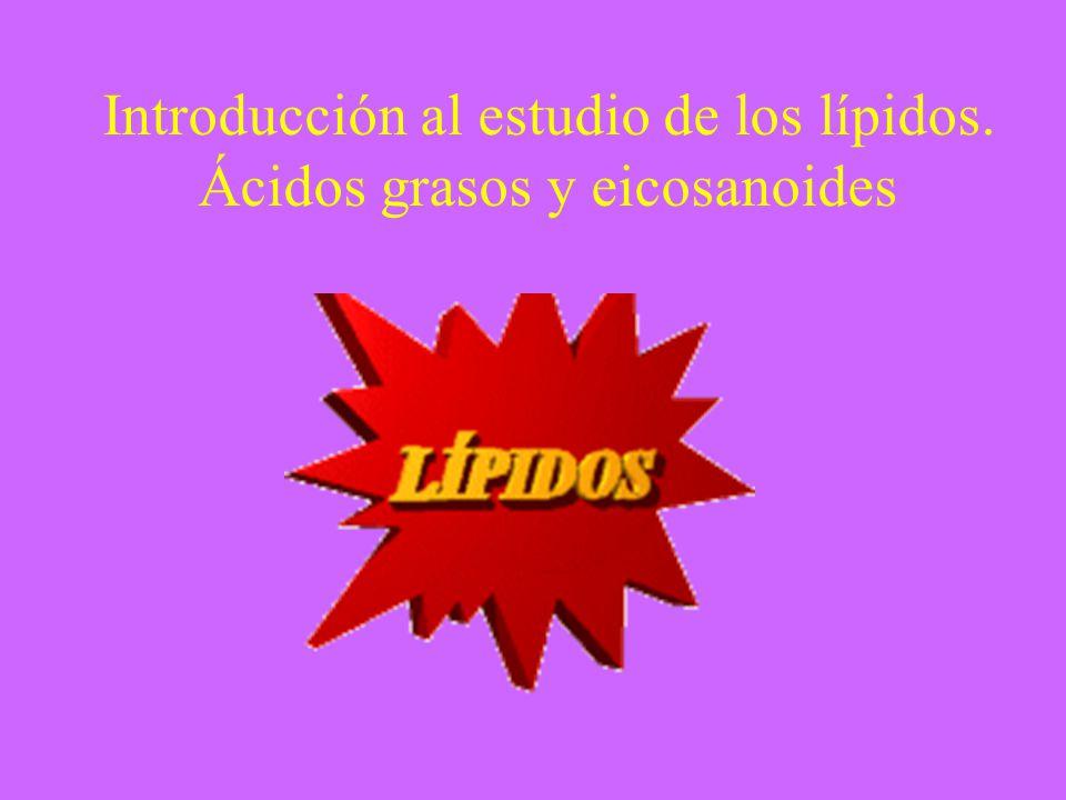 Concepto de Los lípidos son biomoléculas orgánicas formadas básicamente por carbono e hidrógeno y generalmente también oxígeno; pero en porcentajes mucho más bajos.