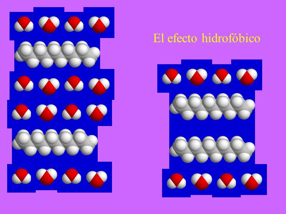 El efecto hidrofóbico