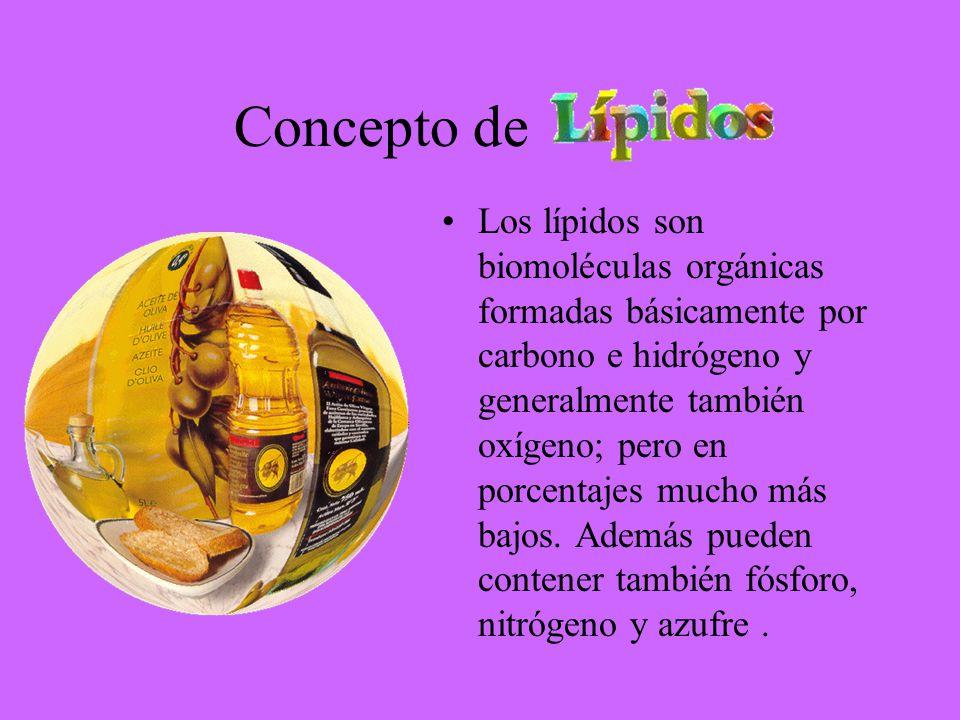 Concepto de Los lípidos son biomoléculas orgánicas formadas básicamente por carbono e hidrógeno y generalmente también oxígeno; pero en porcentajes mu