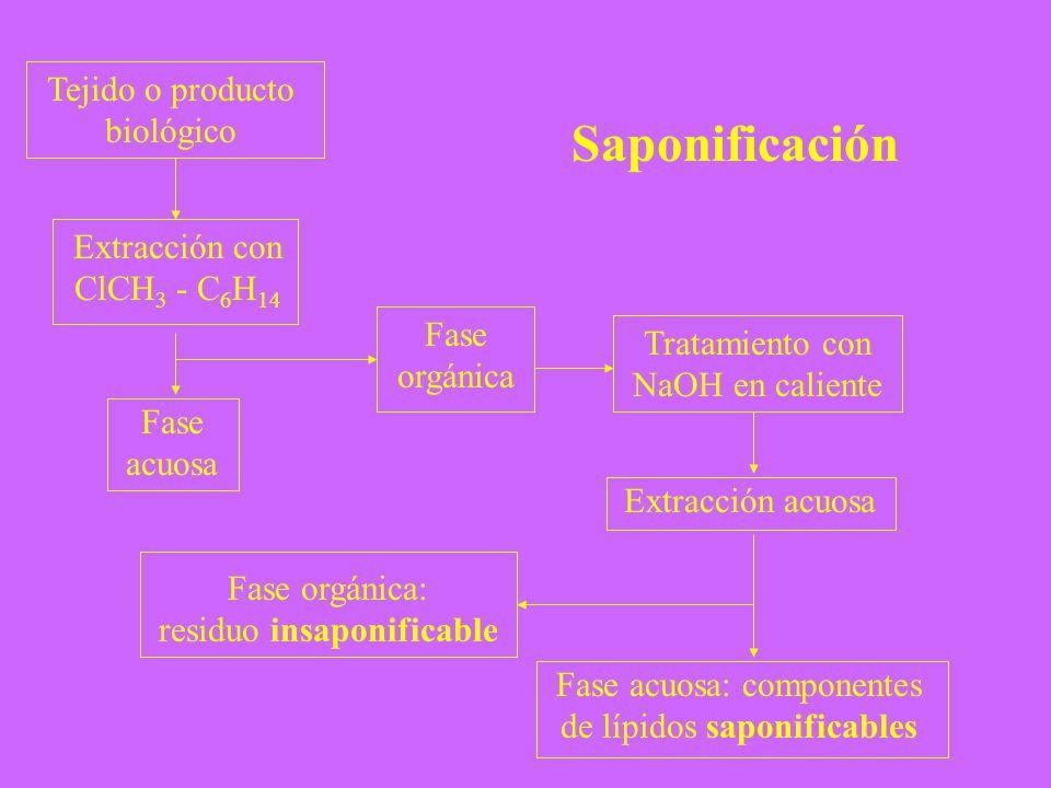 Tratamiento con NaOH en caliente Tejido o producto biológico Extracción con ClCH 3 - C 6 H 14 Fase acuosa Fase orgánica Extracción acuosa Fase orgánic