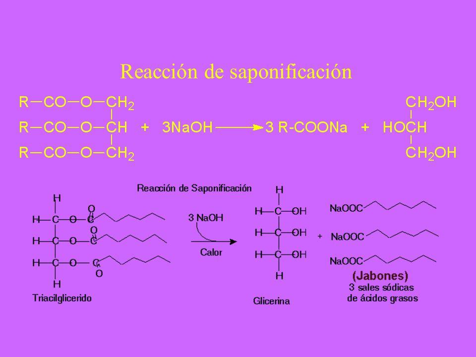 Reacción de saponificación