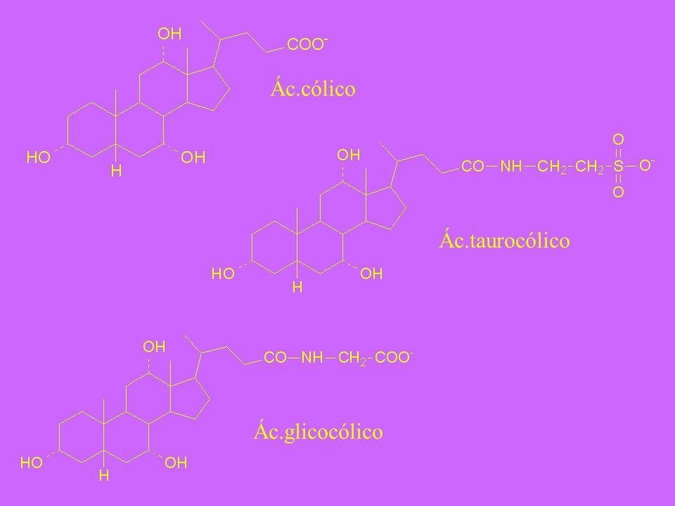 Ác.cólico Ác.taurocólico Ác.glicocólico