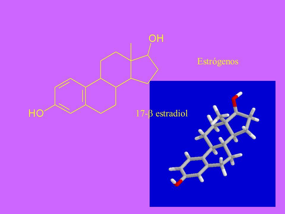 17- estradiol Estrógenos