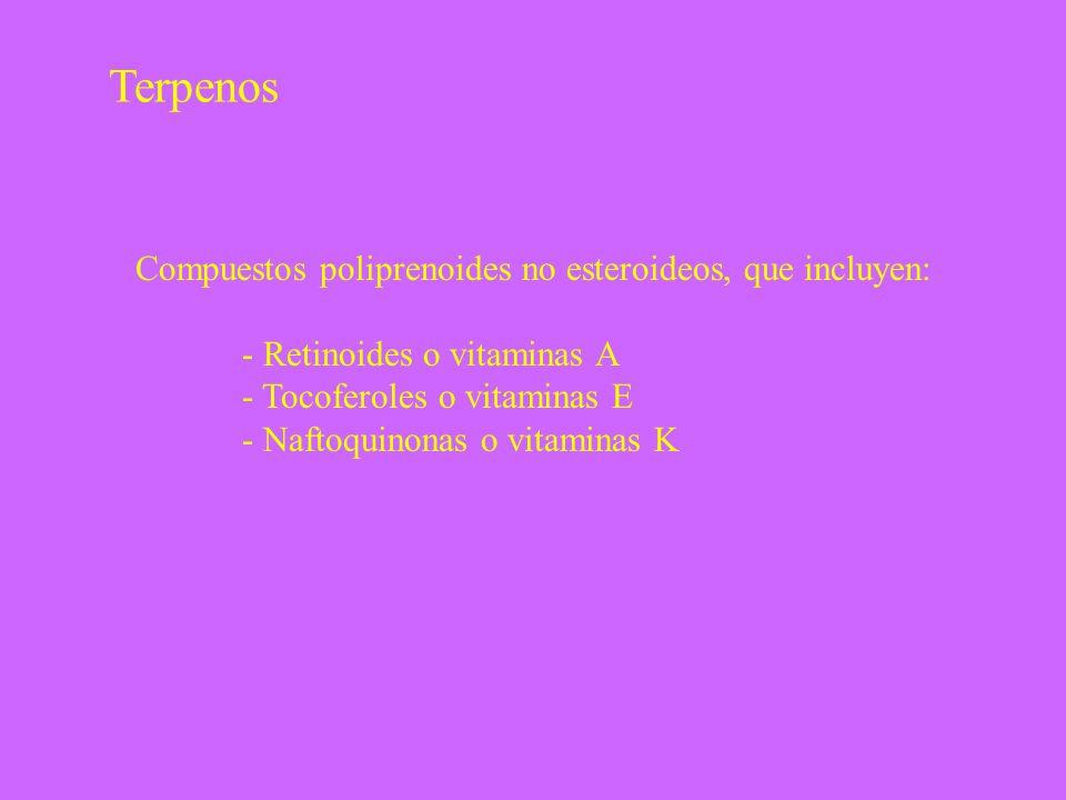 Terpenos Compuestos poliprenoides no esteroideos, que incluyen: - Retinoides o vitaminas A - Tocoferoles o vitaminas E - Naftoquinonas o vitaminas K