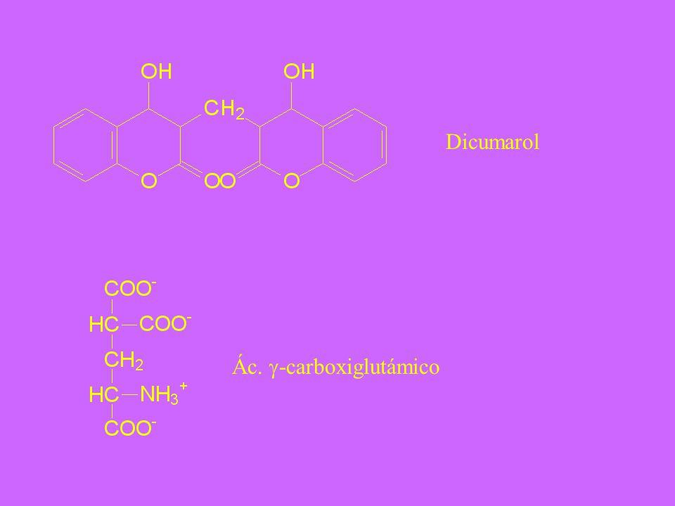 Dicumarol Ác. -carboxiglutámico