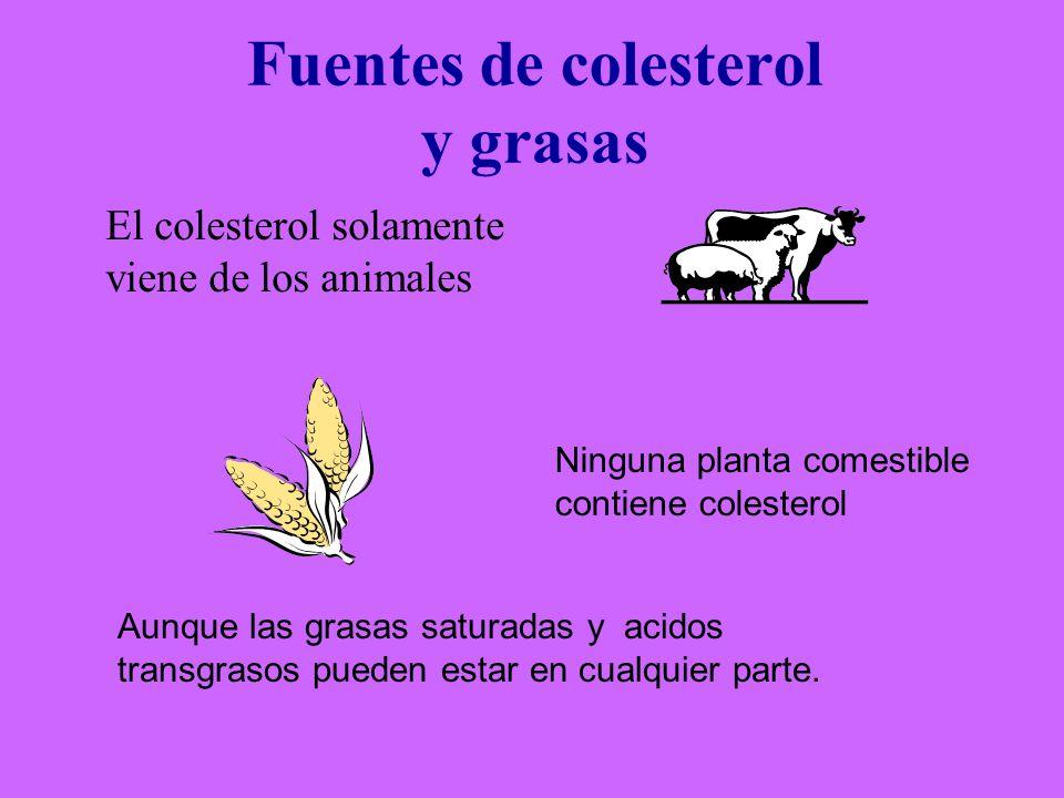 Fuentes de colesterol y grasas El colesterol solamente viene de los animales Ninguna planta comestible contiene colesterol Aunque las grasas saturadas