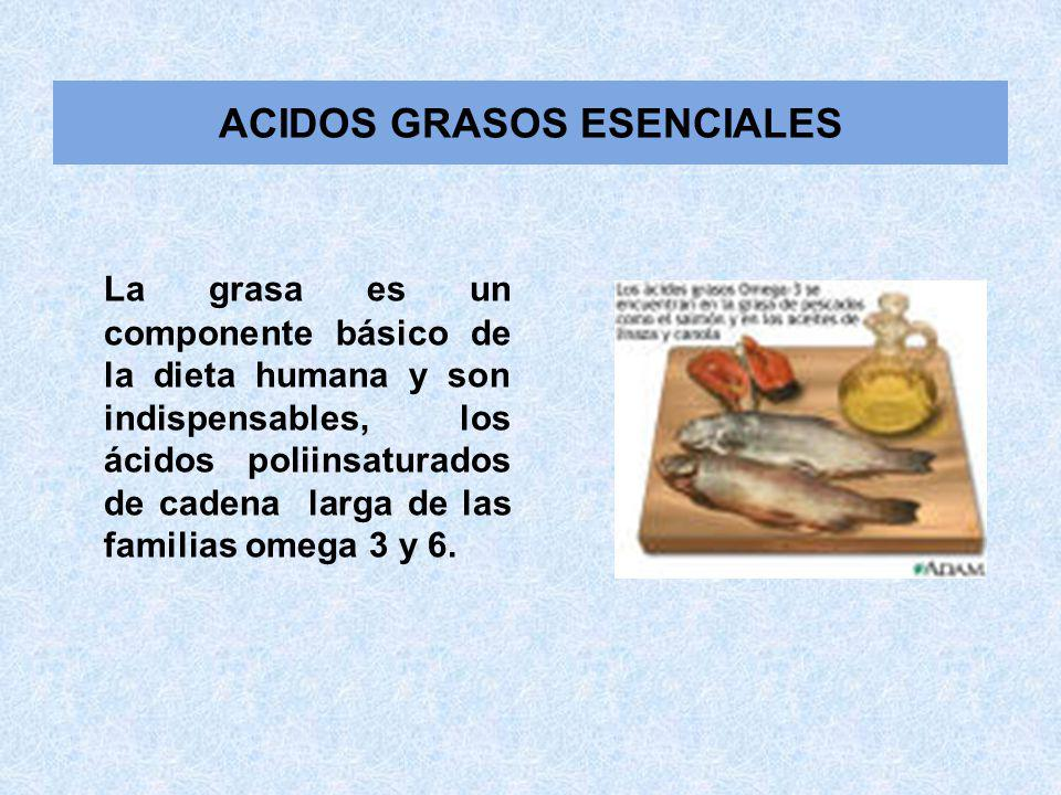 ACIDOS GRASOS ESENCIALES La grasa es un componente básico de la dieta humana y son indispensables, los ácidos poliinsaturados de cadena larga de las f